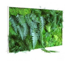 tableau vegetal picagreen 300x262 Decorar con plantas